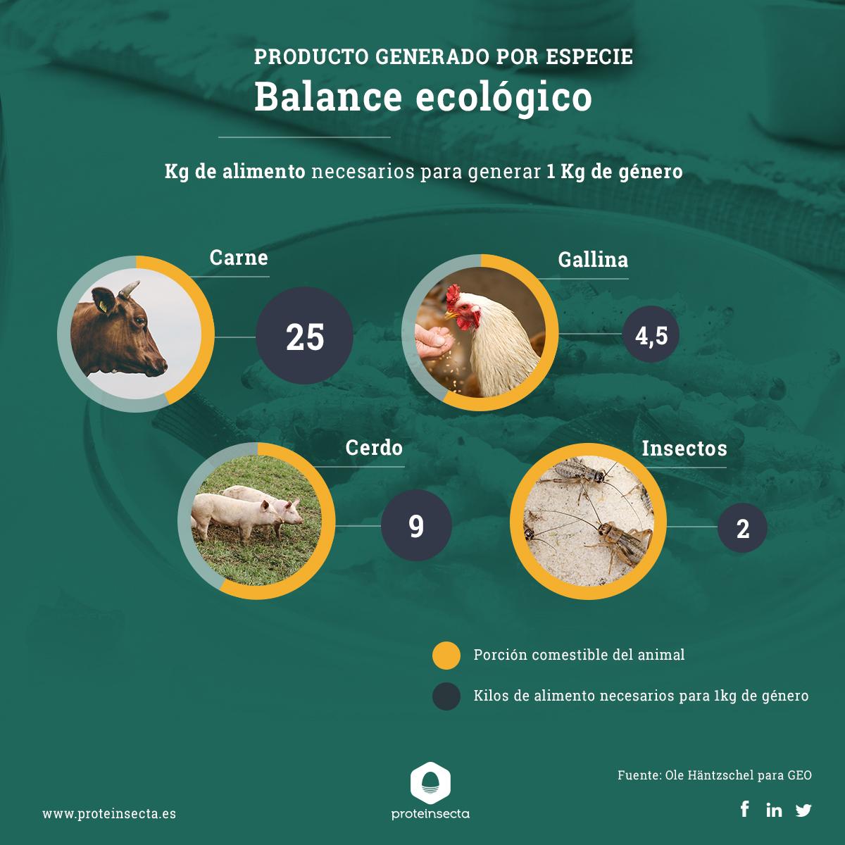 balance ecologico insectos