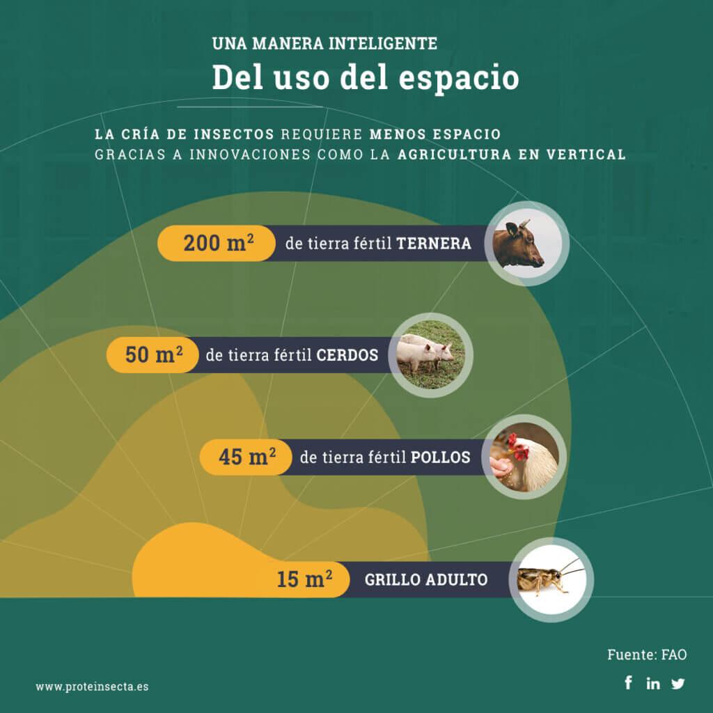 Uso de espacio por parte de diferentes especies