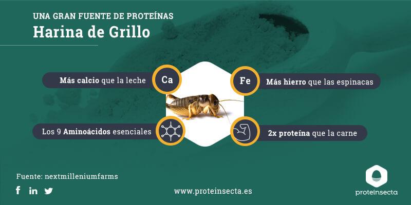 infografía harina de grillo